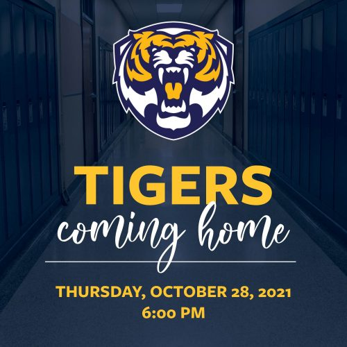 Tigers Coming Home Square